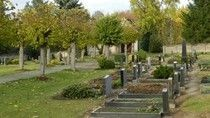 Friedhof Bornsen
