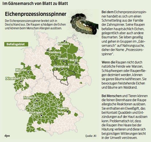 20140319 Volksstimme - Gemeinde Jübar - Eichenprozessionsspinner