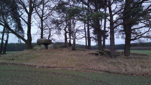 Großsteingrab Nettgau