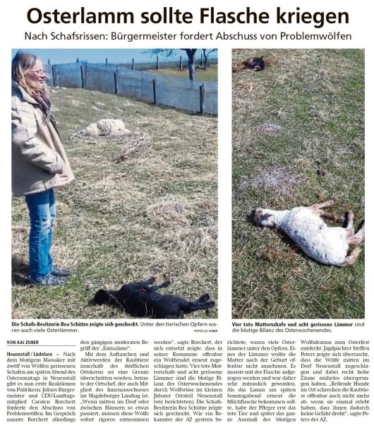 20200415 Altmark Zeitung - Neuenstall - Osterlämmer von Wolf gerissen (Kai Zuber)