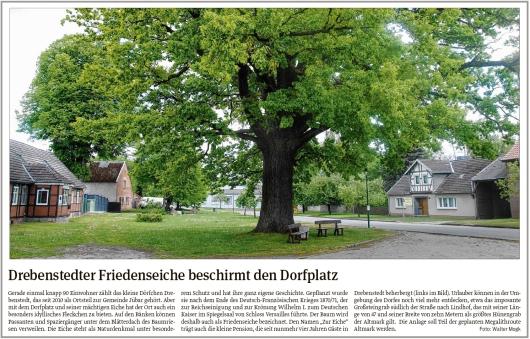 20200613 Volksstimme - Drebenstedter Friedenseiche beschirmt den Dorfplatz (Walter Mogk)