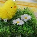 Ostern auf dem Saal der Kastanie